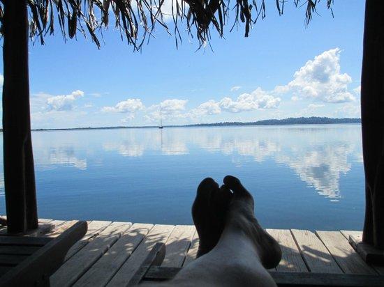 Dolphin Bay Hideaway : Bay side deck