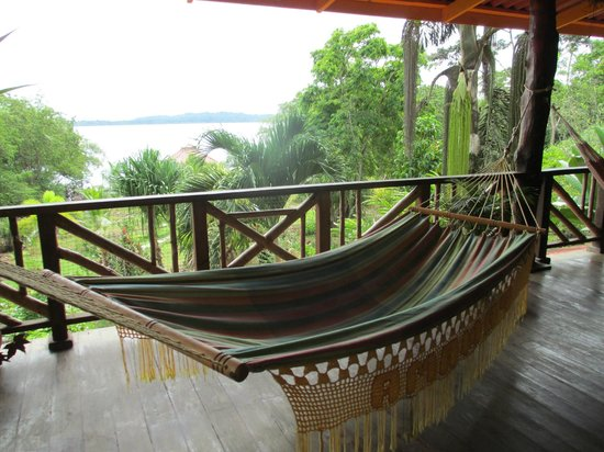 Dolphin Bay Hideaway : Relax