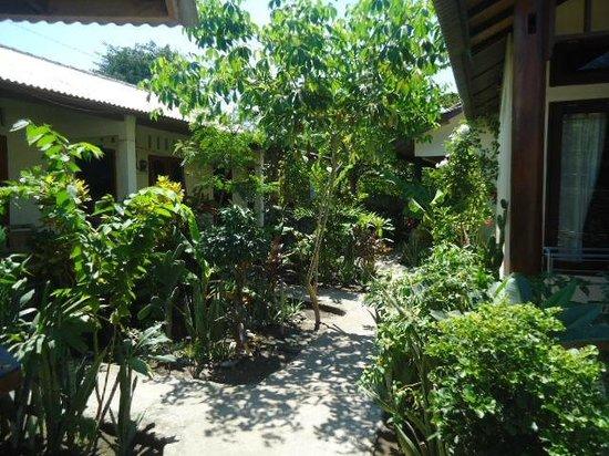 Gili Life Homestay : Garden
