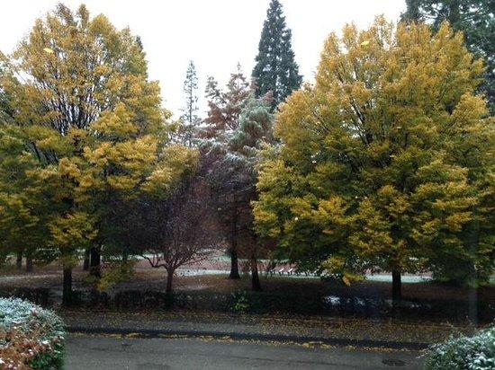 Mercure Saint Etienne Parc de L'Europe : Beautiful view from our room