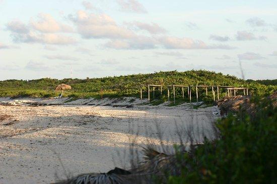 Melia Buenavista: Main beach