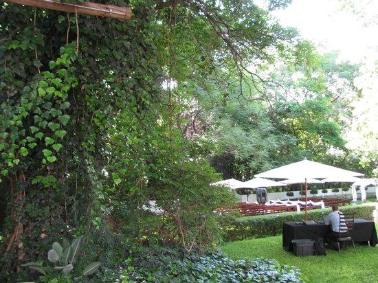 Kleinkaap Boutique Hotel : Garden