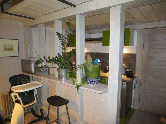 Apartamenty Galeria : cuisine