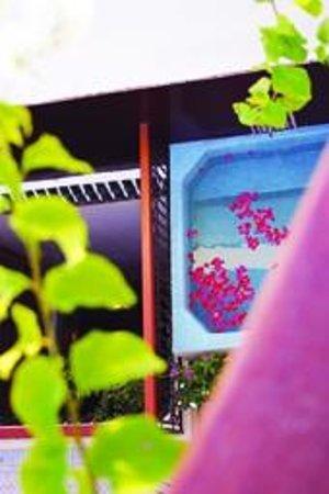 Riad Al Ralia : Vue de la terrasse