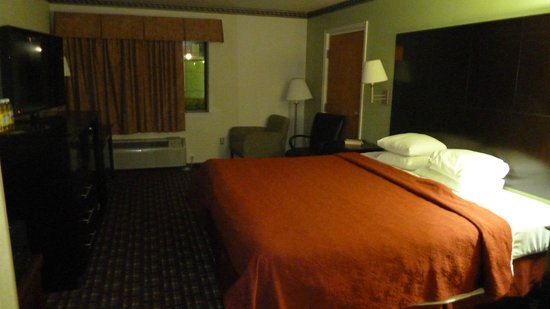 Quality Inn near Seaworld: Zimmer