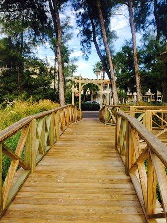 Tortuga Beach Resort: Tortuga beach access