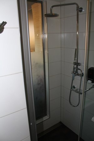 Royal Park Boutique Hotel : Shower
