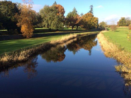 Lough Rynn Castle Estate & Gardens: Lough Rynn grounds - November 2013