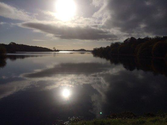 Lough Rynn Castle Estate & Gardens : Lough Rynn - November 2013