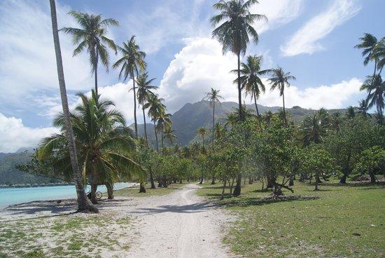 Temae Beach : la spiaggia