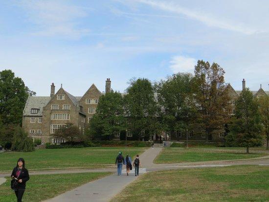 Cornell University : Universidad Cornell