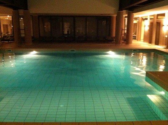 Principe Di Lazise: SPA: dettaglio piscina 1