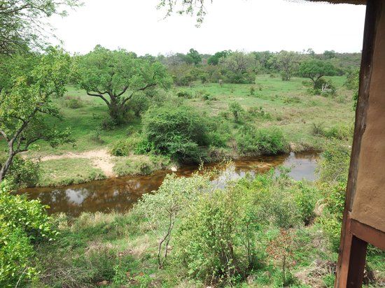 Lukimbi Safari Lodge: viewv from our room