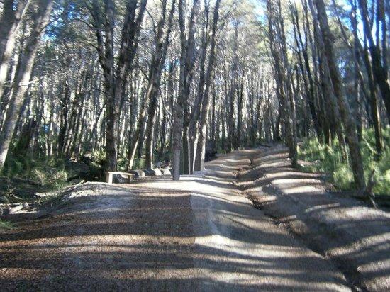 Cerro Bayo: 2-Cº Bayo: h/Cascada Río Bonito