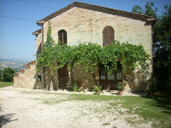 Le Grotte B&B: A front view of the farmhouse