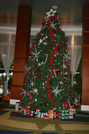 Palm Beach Marriott Singer Island Beach Resort & Spa: Large and lovely tree in the lobby