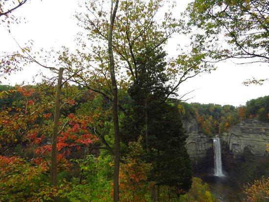 Taughannock Falls State Park : La más alta