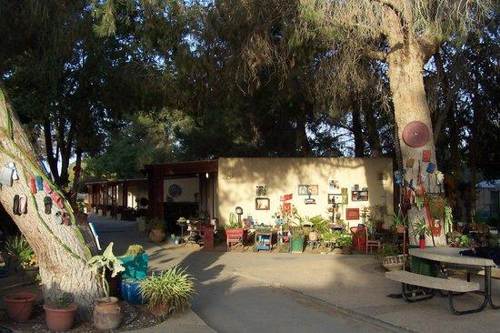 Kibbutz Mashabei Sade - Mashabim: Reception!