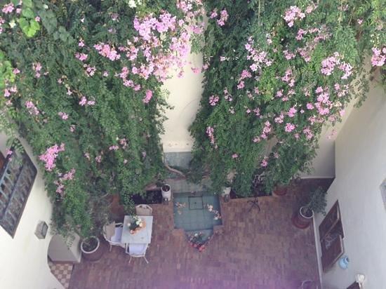 Riad Le Coq Fou: dalla terrazza