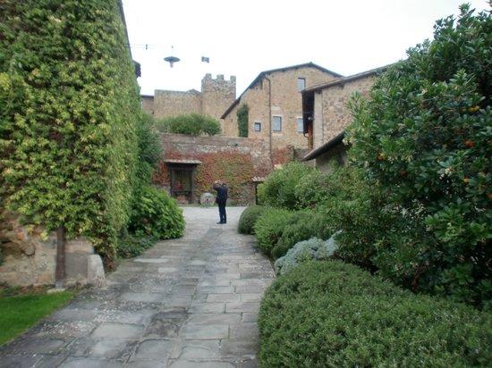 Castello Banfi Wine Estate : castello