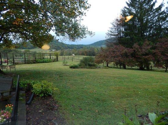 Fairlea Farm Bed and Breakfast: Lovely grounds!!