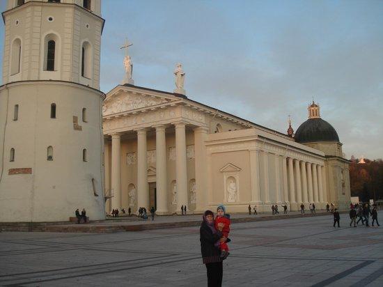 Cathédrale : Вильнюс