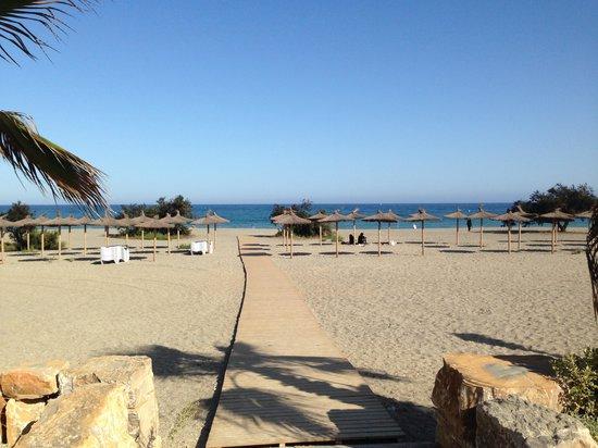 Camping La Bella Vista: Beachfront