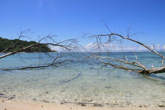 New Emerald Cove: vue de la plage