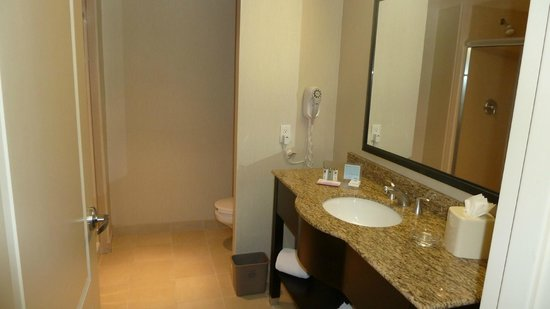 Hampton Inn & Suites Las Vegas Airport: Sanitärbereich