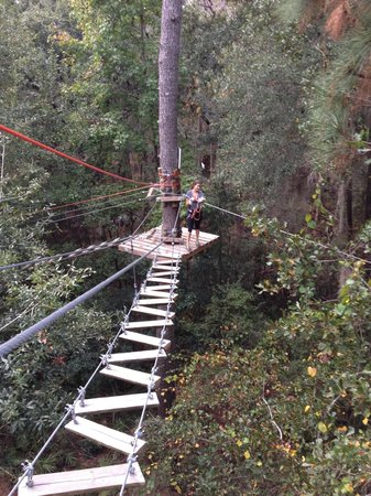 Tallahassee Museum: End of course race to the end, huge zipline!