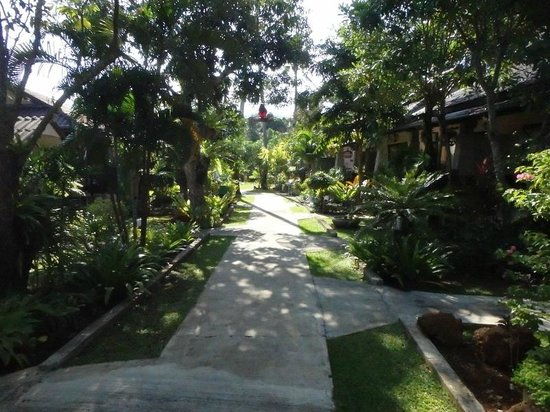 Noppharat Resort: Main Path