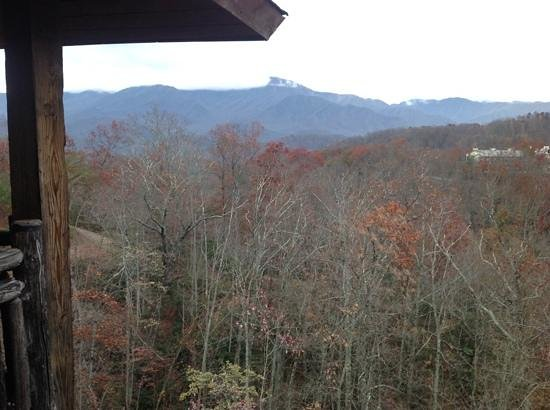 The Lodge at Buckberry Creek : View from our balcony