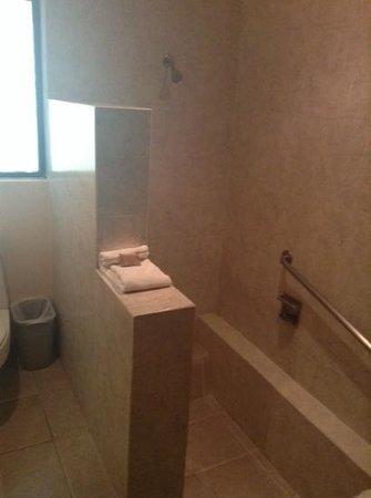 Mision Comanjilla: baño