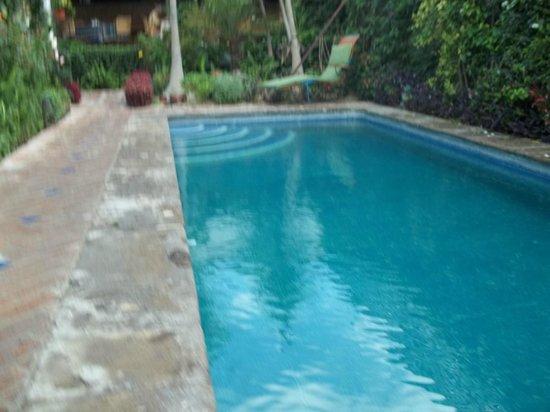 Casa Flores: Pool side