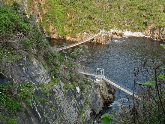 Garden Route (Tsitsikamma, Knysna, Wilderness) National Park: The bridges viewed from above
