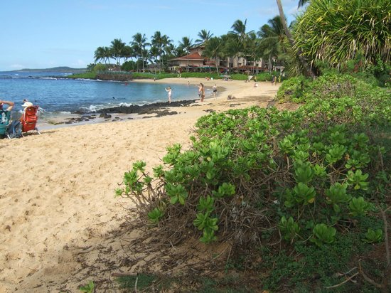 The Point at Poipu: Brenneke's Beach