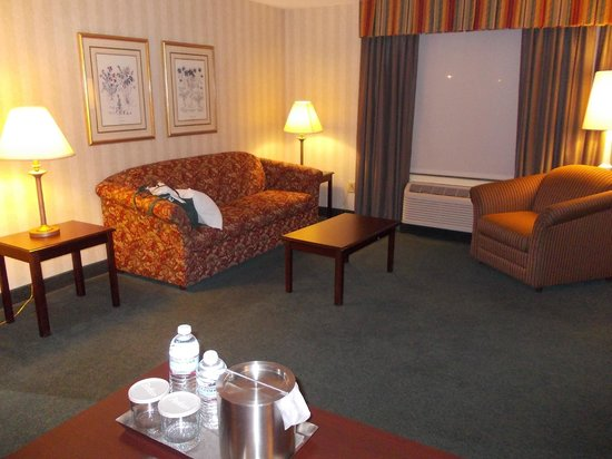 Radisson Hotel and Suites Chelmsford / Lowell: Sleeper Sofa