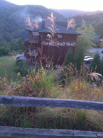 The Lodge at Buckberry Creek : View from the parking lot look down towards the main lodge