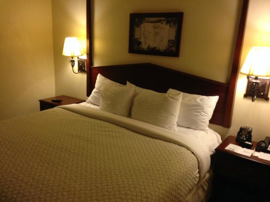 Embassy Suites by Hilton Charleston - Historic Charleston: King Bedroom
