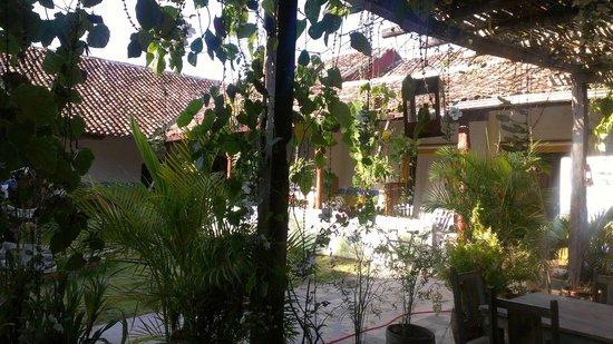 La Floresta Hostel : garden