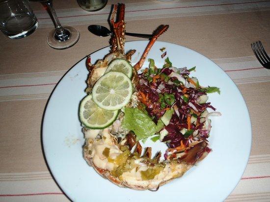 Posada Galeria La Corsaria: Deliciosa lagosta!