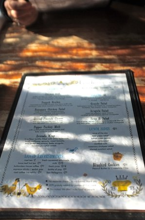 Ria's Bluebird: Scattered light on the patio