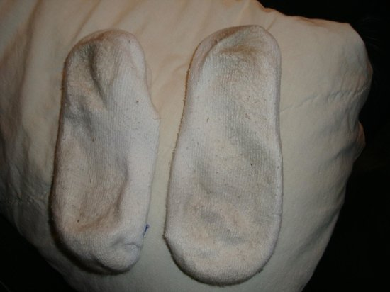 Chicago Marriott Suites O'Hare: Did not pass my white sock test