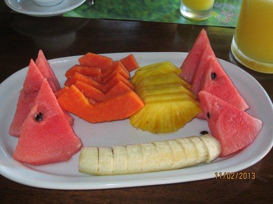 Hotel El Silencio del Campo: Beautiful fruit platter served to us each morning.