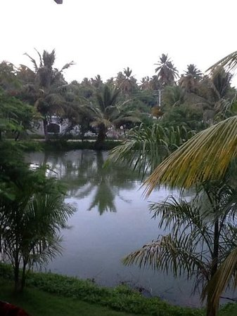 IFA Villas Bavaro Resort & Spa: view from our room