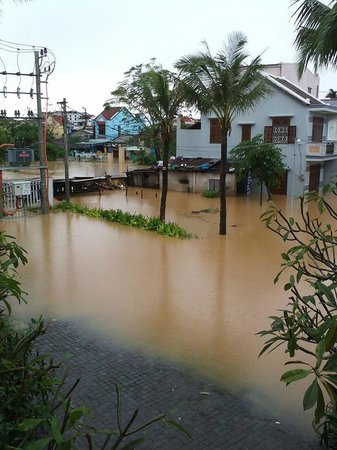 Vinh Hung Emerald Resort: Flood isolated the resort. The resort is higher than other houses of Hoian so it wasn't that bad