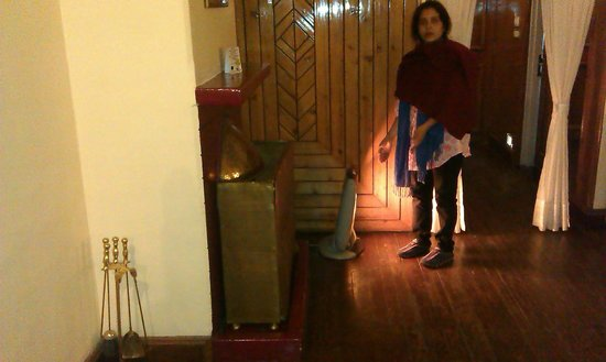 Central Heritage Resort and Spa, Darjeeling: Too small a Heater for such a big room!