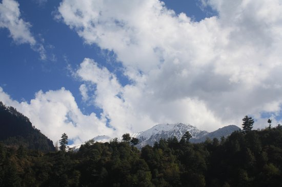 Rock Manali Hotel & Spa: VIEW FROM THE HOTEL