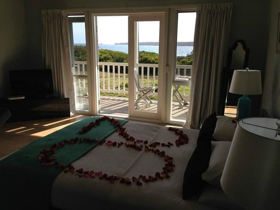 Cliff Top Boutique Accommodation: View from suite 4 & '20' birthday rose petals
