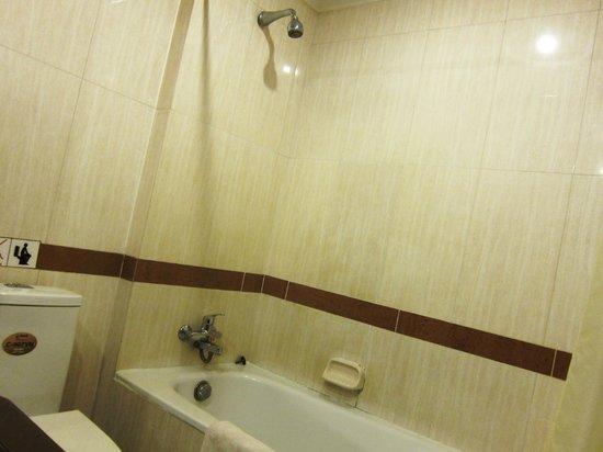 吳哥窟莫納里奇酒店照片